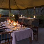 Niezapomniane sylwestrowe safari